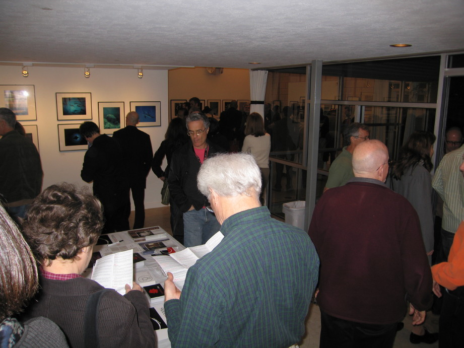 Fotofest gallery crowd